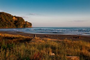 07Jun2015010604Ohope Beach Early Morning.jpg