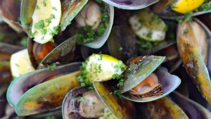 07Jun2015040656Havelock mussels.jpg