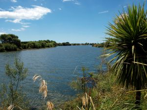 07Jun2015120641EDGECUMBE Rangitaiki_River.jpg