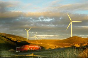 30Apr2016080457woodville-Windfarm.jpg